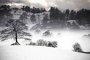 winter sun over Lythe Valley, Windermere