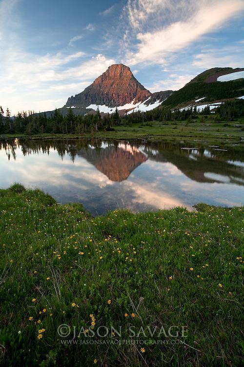 Relection on pond near Logan Pass, Glacier National Park.