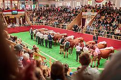 29.04.2018, Maishofen, AUT, XII Weltkongress Pinzgauer Rind, im Bild Uebersicht der Arena // Overview of the Arena during the XII Pinzgauer cattle World Congress in Maishofen, Austria on 2018/04/29. EXPA Pictures © 2018, PhotoCredit: EXPA/ JFK