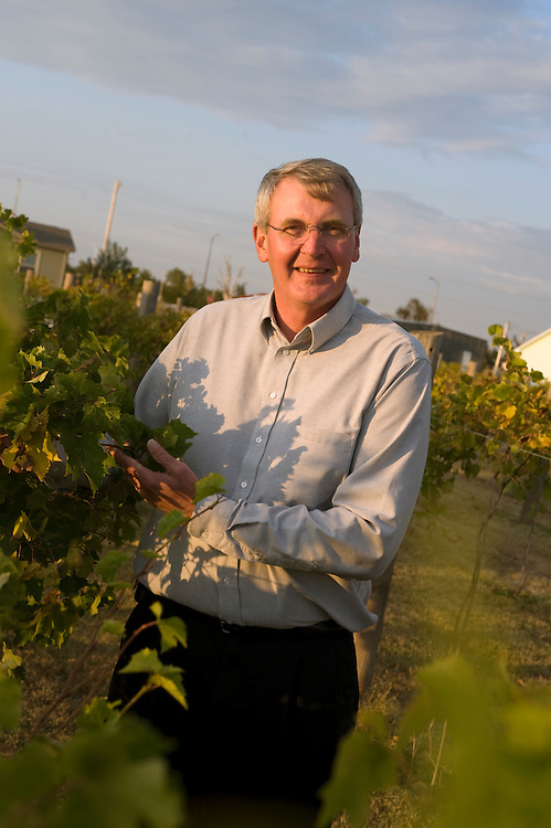 """Greensburg, Kansas, USA..Buergermeister Bob Dixon baut auf seinem Grundstueck Wein an...Mayor Bob Dixon has a small vineyard on his property ..""""Greensburg: Better, Stronger, Greener!"""".On May 4, 2007, an EF5 tornado cut a 1.7-mile path of destruction through Greensburg, Kansas. Winds reaching speeds of 205 miles per hour uprooted trees, demolished homes and leveled the town. Eleven people died and 95% of the buildings were destroyed beyond repair. Residents have since worked furiously to rebuild it in a way that is both economically and environmentally sustainable and to meet the highest environmental standards. Greensburg, whose population has dropped from about 1400 to 800 following the storm and is now growing again, is currently the greenest town in America and the first in the United States to pass a resolution to certify that all city-owned buildings earn LEED Platinum accreditation, the highest level of the LEED rating system...Foto © Stefan Falke"""