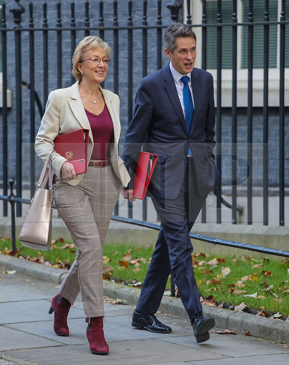 © Licensed to London News Pictures. 22/10/2019. London, UK. Andrea Leadsom, Secretary of State for Business and Gavin Williamson, Secretary of State for Education  leave 10 Downing Street after a Cabinet meeting this morning… As Boris Johnson tries to get his Brexit Bill through Parliament this week. Photo credit: Alex Lentati/LNP