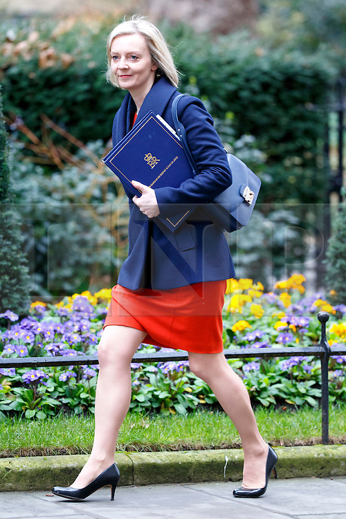 © Licensed to London News Pictures. 21/02/2017. London, UK. Justice Secretary LIZ TRUSS attends a cabinet meeting in Downing Street, London on Tuesday, 21 February  2017. Photo credit: Tolga Akmen/LNP