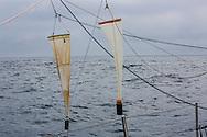 North Atlantic Ocean, September 2014.<br /> 200micron neuston nets plankton tows are trawls used to gather samples on board the Sea Dragon. &copy; Chiara Marina Grioni