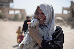 © Licensed to London News Pictures. 15/06/2017. Mosul, Iraq. An elderly Mosul resident hugs her pet cat after escaping from ISIS held West Mosul shortly before this picture was taken.<br /> <br /> Despite heavy fighting between the Islamic State and Iraqi Security Forces many civilians have started to leave ISIS territory in West Mosul. Mosul residents, many of whom have been in hiding in their homes since the start of the West Mosul Offensive, often have to run through ISIS sniper and machine gun fire to reach the safety of Iraqi Security Forces positions. Photo credit: Matt Cetti-Roberts/LNP