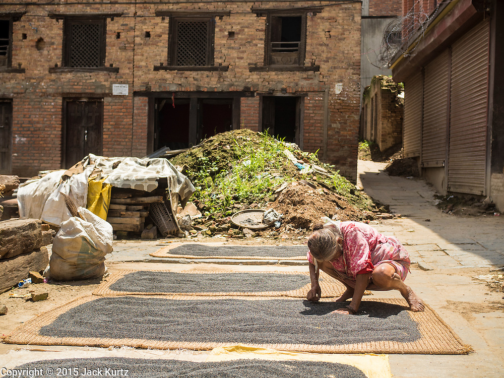 04 AUGUST 2015 - BUNGAMATI, NEPAL: A woman whose home was destroyed in the earthquake dries lentils in the town square in Bungamati, a village about an hour from Kathmandu. Three months after the earthquake many families still live in tents and temporary shelters scattered around the village. The Nepal Earthquake on April 25, 2015, (also known as the Gorkha earthquake) killed more than 9,000 people and injured more than 23,000. It had a magnitude of 7.8. The epicenter was east of the district of Lamjung, and its hypocenter was at a depth of approximately 15 km (9.3 mi). It was the worst natural disaster to strike Nepal since the 1934 Nepal–Bihar earthquake. The earthquake triggered an avalanche on Mount Everest, killing at least 19. The earthquake also set off an avalanche in the Langtang valley, where 250 people were reported missing. Hundreds of thousands of people were made homeless with entire villages flattened across many districts of the country. Centuries-old buildings were destroyed at UNESCO World Heritage sites in the Kathmandu Valley, including some at the Kathmandu Durbar Square, the Patan Durbar Squar, the Bhaktapur Durbar Square, the Changu Narayan Temple and the Swayambhunath Stupa. Geophysicists and other experts had warned for decades that Nepal was vulnerable to a deadly earthquake, particularly because of its geology, urbanization, and architecture.    PHOTO BY JACK KURTZ