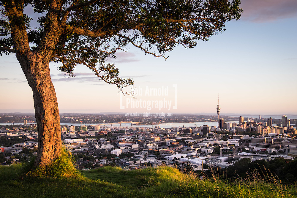 A view of Auckland city from Mt. Eden.