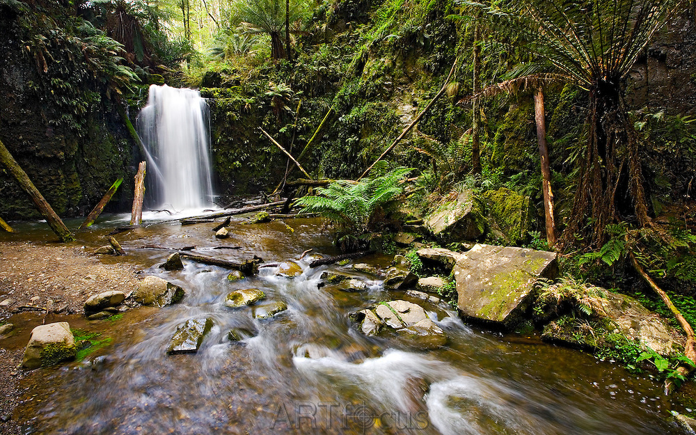Marriners Falls in Great Otway National Park near Apollo Bay