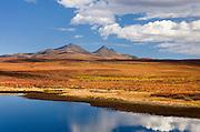 Small pond in the colorful autumn tundra of the Blackstone Plateau, Tombstone Territorial Park Yukon Canada