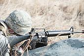 Army Spring LDX b
