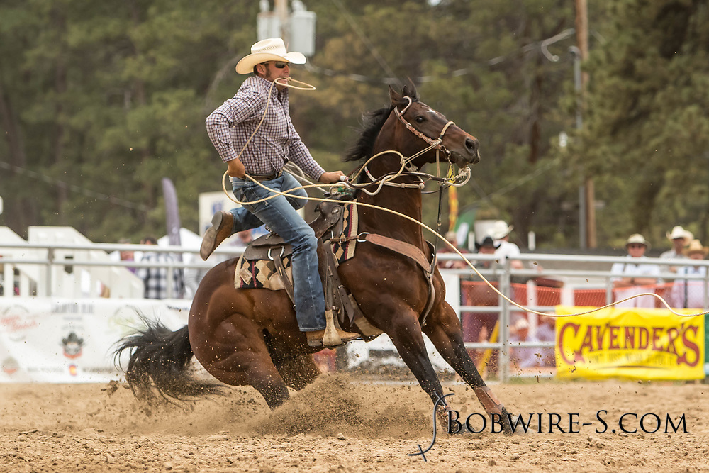 Brandon Neugebauer makes his tie-down roping run during the third performance of the Elizabeth Stampede on Sunday, June 3, 2018.