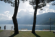 svizzera, Ascona........Switzerland,  Canton Ticino, Ascona, the lakefront  gardens Lake Maggiore and its valleys are alpine landscapes that merge into typically Mediterranean scenery, where popular traditions are combined with internationally renowned events, and villages, in which time seems to have stood still, peep down from their lofty peaks on towns that are looking to the future. Fascinating contrasts that make this a unique region