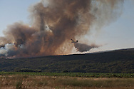 Corsica. France. Canadair plane flying over land in fire in the area of Propriano  Corsica south - Propriano    /  canadair survolant un incendie, les touristes en vacances regardent.   Corse du sud - Propriano