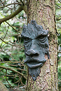 Face sculpture on tree in Yorkshire Dales NP, England, UK, Europe. Hike along the River Swale from Reeth to Marske, in Yorkshire Dales National Park, England, United Kingdom, Europe. England Coast to Coast hike day 9 of 14. Overnight at Kings Head Hotel in Richmond, North Yorkshire county. [This image, commissioned by Wilderness Travel, is not available to any other agency providing group travel in the UK, but may otherwise be licensable from Tom Dempsey – please inquire at PhotoSeek.com.]