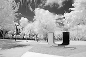 Campus Scenes - Black & White