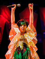 Björk at Madison Square Garden.