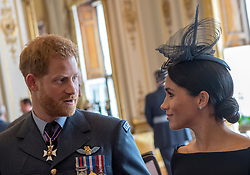 Duke and Duchess of Sussex attend a reception at Buckingham Palace, London to mark the centenary of the Royal Air Force.
