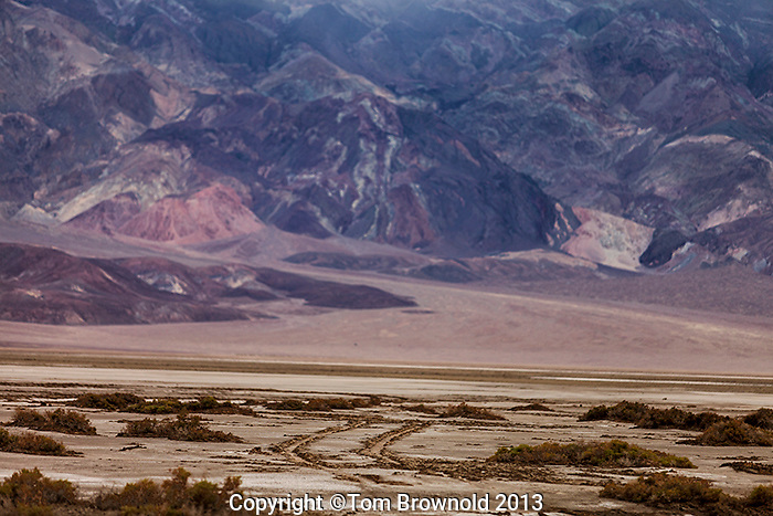 Tracks from an illegal motorized vehilce on the edge of Sat Creek in Death Valley with an aluvial fan and the Panamint mountains.