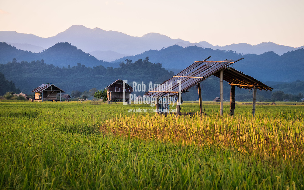 Rice huts in fields during sunset in Luang Nam Tha, Laos