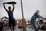 A local fisherman carries a fish on the dock in Semporna in the State if Sabah on the Island of Borneo, Malaysia.