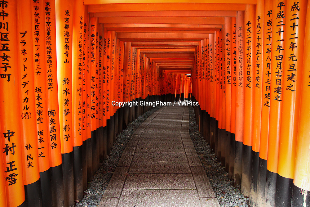 Walking torii path in Fushimi Inari Shrine in Kyoto Prefectures, Japan