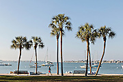 View of Sarasota Bay from Bayfront Park Sarasota, Florida
