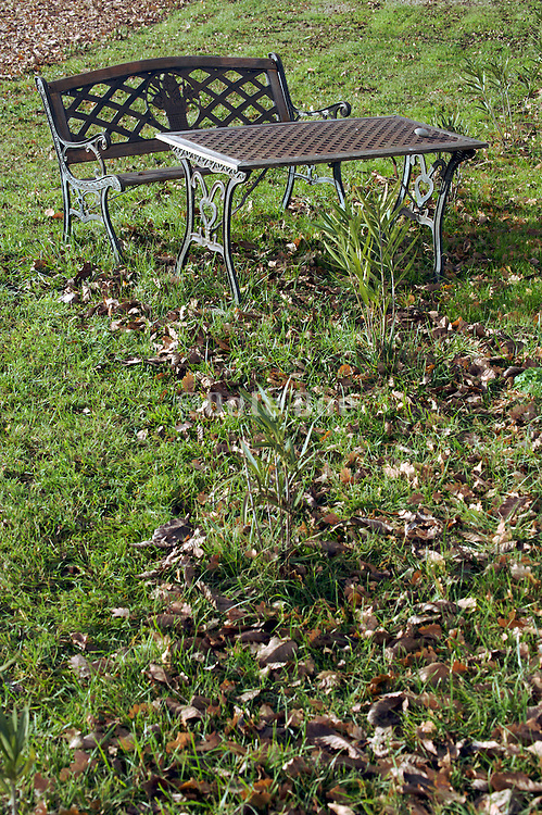outdoor garden bench during fall season