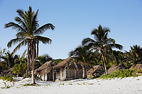 cabana on the beach  of tulum in yucatan
