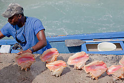 A man unloading his conch shell catch on Prince George Wharf, Bahamas