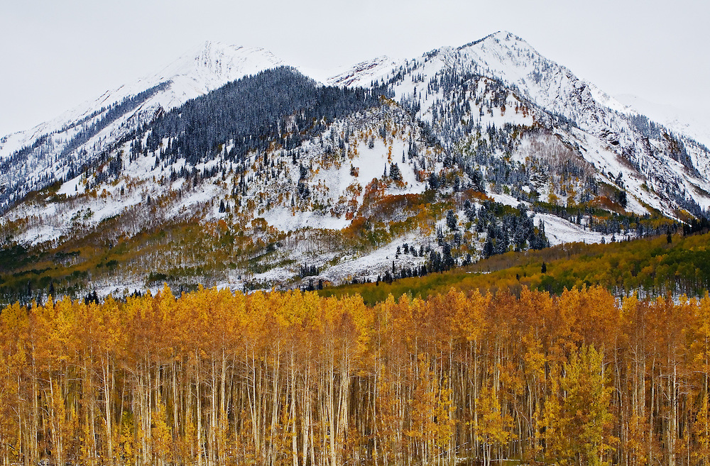 Autumn in the high country near Crested Butte, Colorado.