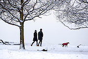 © Licensed to London News Pictures. 03/02/2015. Richmond, UK. People walk a dog in the snow covered ground.  Deer in snow in richmond Park, South West London today 3rd February 2015. Snow fell across the London area overnight . Photo credit : Stephen Simpson/LNP