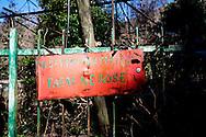 Monticchio Laghi (PZ) 12.03.2011 - Il degrado dei laghi di Monticchio (PZ).