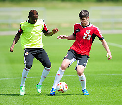 - Photo mandatory by-line: Dougie Allward/JMP - Tel: Mobile: 07966 386802 28/06/2013 - SPORT - FOOTBALL - Bristol -  Bristol City - Pre Season Training - Npower League One
