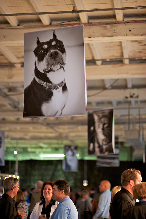 Animal Refuge League of Greater Portland Annual Benefit