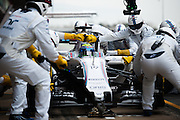 February 19-22, 2015: Formula 1 Pre-season testing Barcelona : Felipe Massa (BRA), Williams Martini Racing