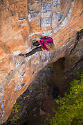 "Legendary climber Lynn Hill climbing ""Filibuster"" 13a, in Rifle Mountain Park, Rifle Colorado."