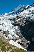Bergwanderer auf der Weg zum Glecksteinhütte mit in Hintergrund die Oberer Grindelwaldgletscher