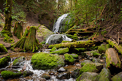 United States, Washington, Issaquah. A waterfall in the forest near Cougar Mountain.
