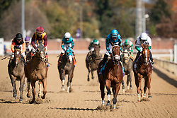 (Horse) with (Jockey) up trained by (Trainer) win the (Race), Saturday, Nov. 03, 2018 at the Churchill Downs  in Louisville.