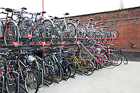 Bicycles parked in storage racks