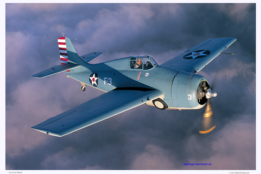 Wildcat, warbird air-to-air