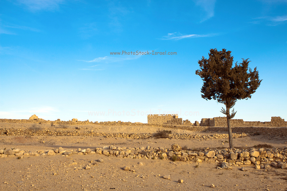 Israel, Northern Negev Mountain. Ruins of Shivta, built in the 1st century by the Nabateans. A world Heritage Site as part of the Spice Route.