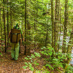 Fishermen walk a trail along Cold Stream in Maine's Northern Forest. Cold Stream Gorge. Johnson Mountain Township.