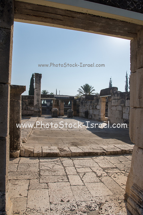 Israel, Sea of Galilee, The ruins at Capernaum