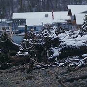 Snowfall at Dick Gilmur shoreline - Northeast Tacoma, WA