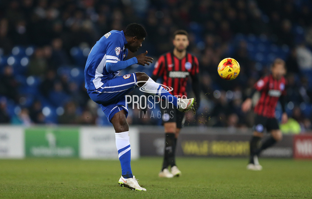 Bruno Ecuele Manga during the Sky Bet Championship match between Cardiff City and Brighton and Hove Albion at the Cardiff City Stadium, Cardiff, Wales on 10 February 2015.