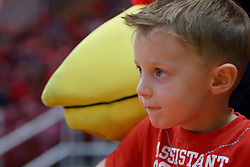 22 November 2017:  A young boy sits with Reggie to watch the game during a College mens basketball game between the Quincy Hawks and Illinois State Redbirds in  Redbird Arena, Normal IL