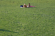 Picnic in the grass