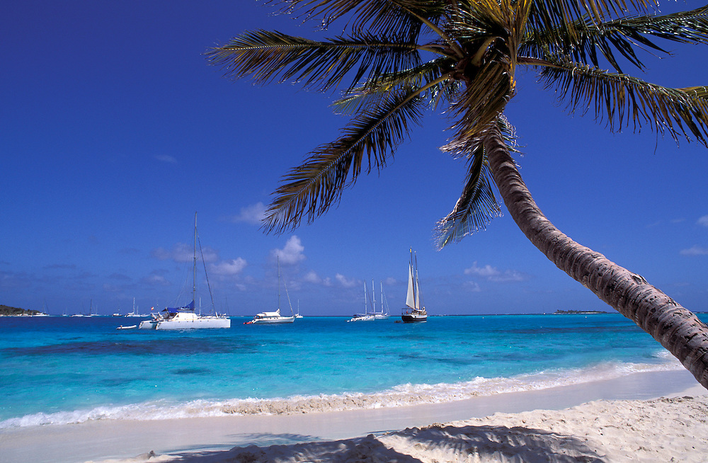 White sand beach and sail boats, Tobago Cays, The Grenadines, Caribbean