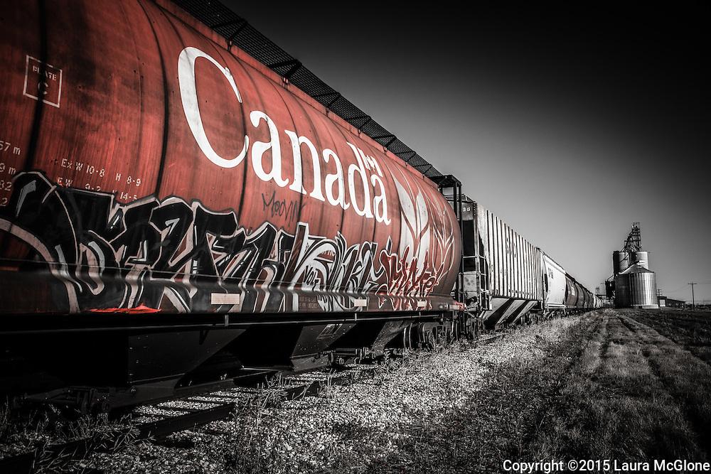 Canadian CN Rail car with graffiti, Alberta Canada