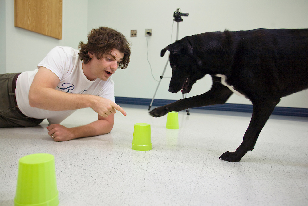 Prof. Brian Hare, Director of the Duke Canine Cognition lab, with his dog Tas or Tasmanian Devil, at Duke University in Durham, N.C., Monday, June 15, 2009.